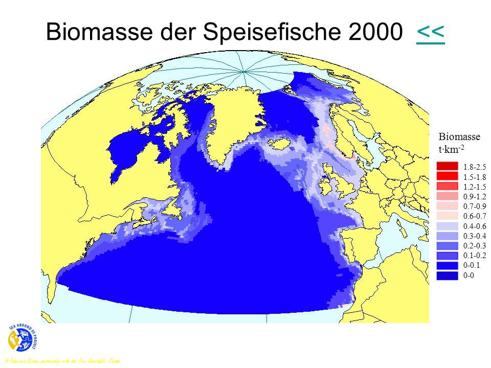 Biomasse der Speisefische 2000 <<