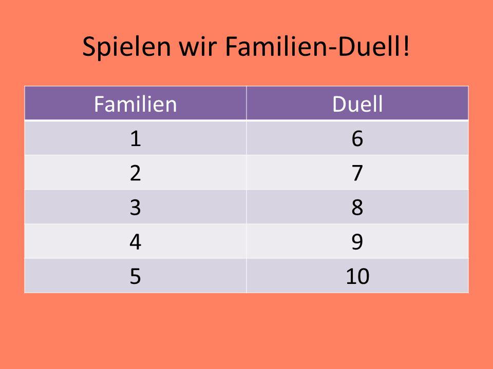 Spielen wir Familien-Duell!