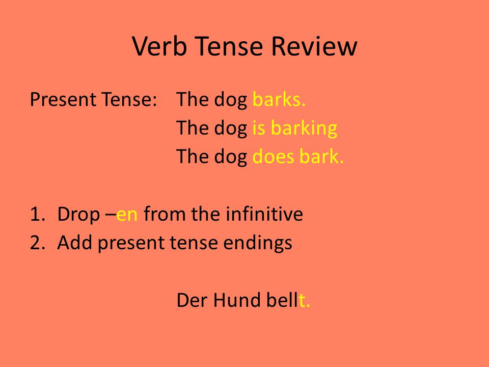 Verb Tense Review Present Tense: The dog barks. The dog is barking