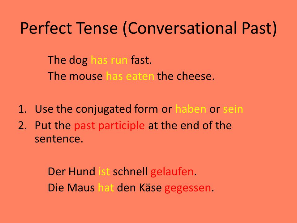 Perfect Tense (Conversational Past)