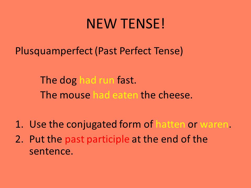 NEW TENSE! Plusquamperfect (Past Perfect Tense) The dog had run fast.