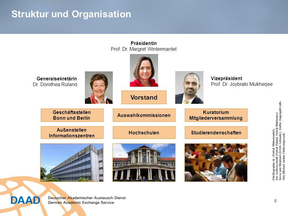 Struktur und Organisation