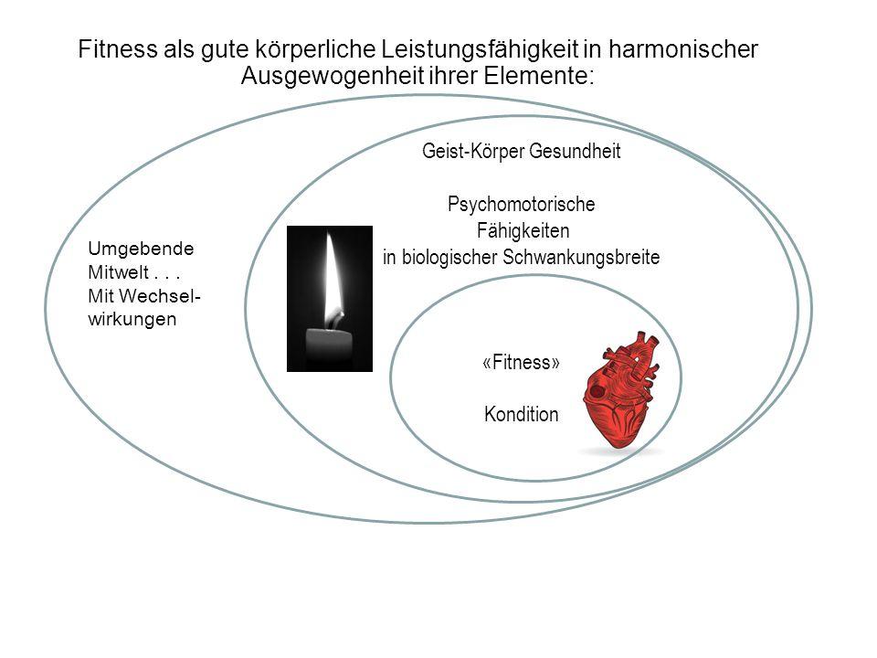Fitness als gute körperliche Leistungsfähigkeit in harmonischer Ausgewogenheit ihrer Elemente: