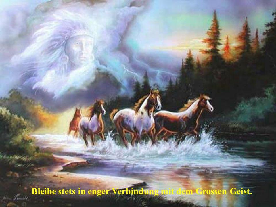 Bleibe stets in enger Verbindung mit dem Grossen Geist.