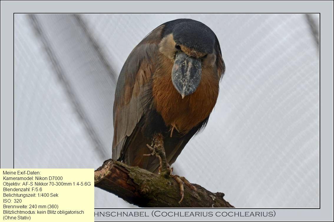 Meine Exif-Daten: Kameramodel: Nikon D7000. Objektiv: AF-S Nikkor 70-300mm 1:4-5.6G. Blendenzahl: F/5.6.