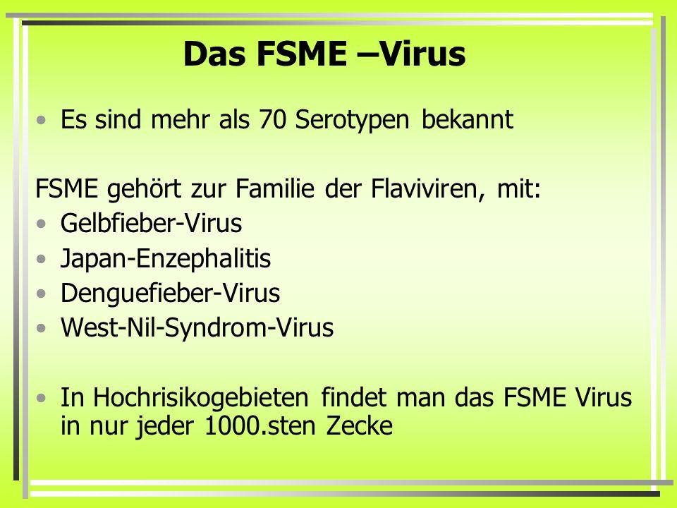 Das FSME –Virus Es sind mehr als 70 Serotypen bekannt