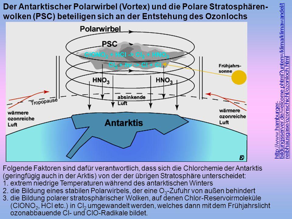 Der Antarktischer Polarwirbel (Vortex) und die Polare Stratosphären-wolken (PSC) beteiligen sich an der Entstehung des Ozonlochs