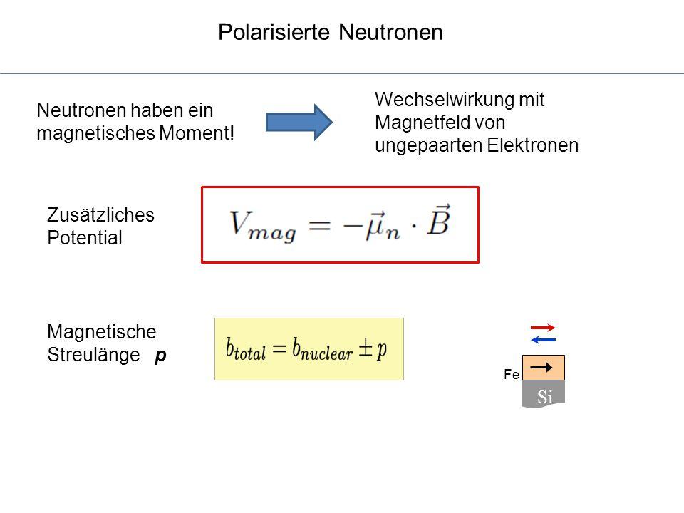 Polarisierte Neutronen