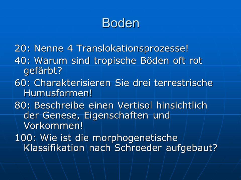 Boden 20: Nenne 4 Translokationsprozesse!