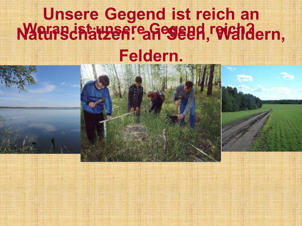 Unsere Gegend ist reich an Naturschätzen: an Seen, Wäldern, Feldern.