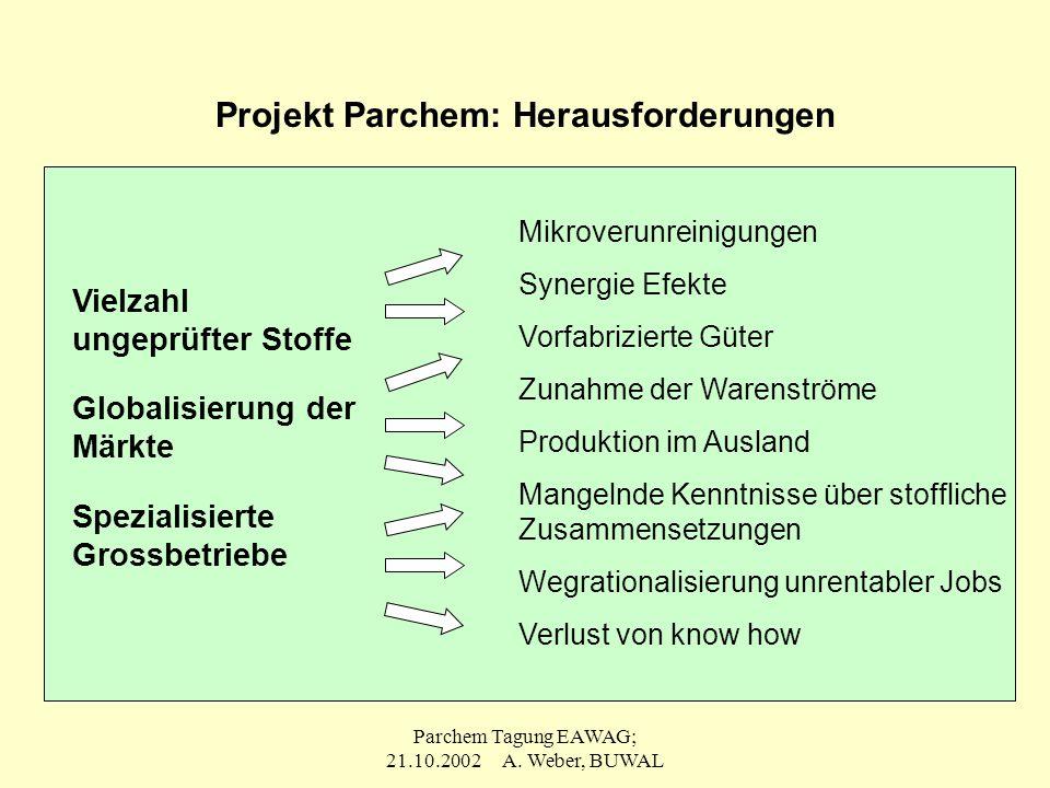 Projekt Parchem: Herausforderungen
