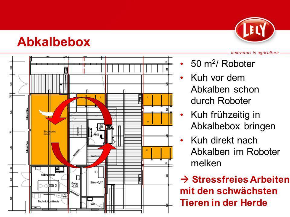 Abkalbebox 50 m2/ Roboter Kuh vor dem Abkalben schon durch Roboter