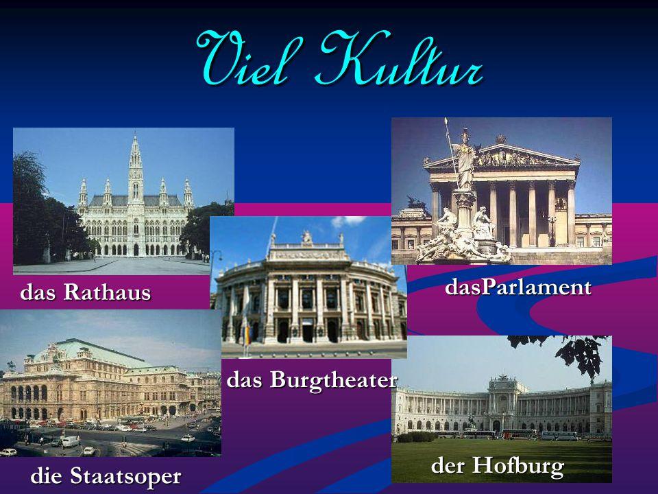 Viel Kultur dasParlament das Rathaus das Burgtheater der Hofburg