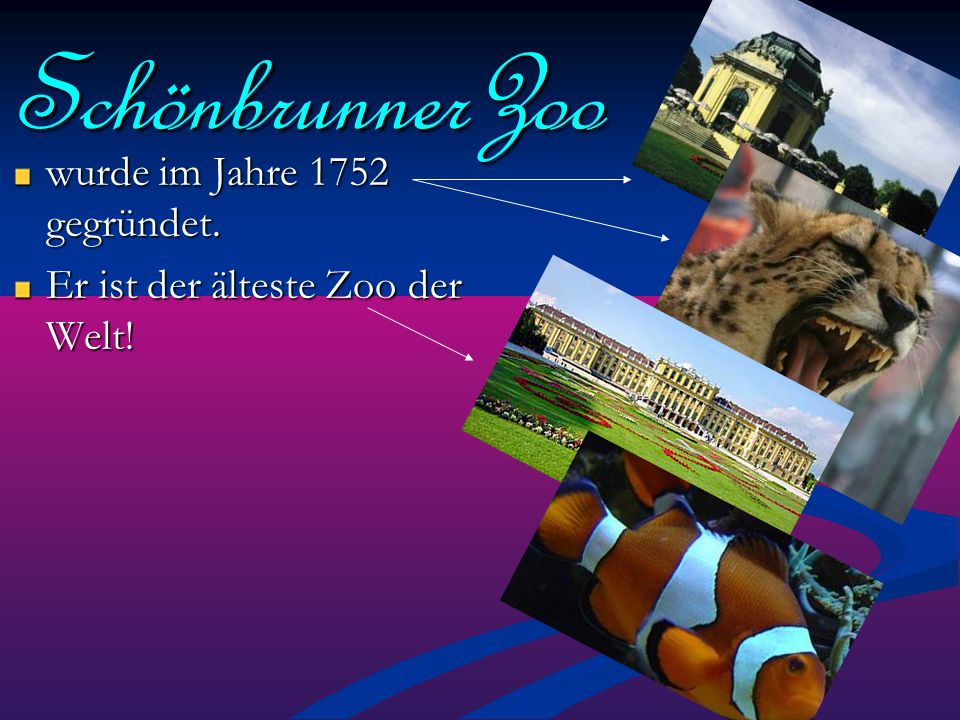 SchönbrunnerZoo wurde im Jahre 1752 gegründet.