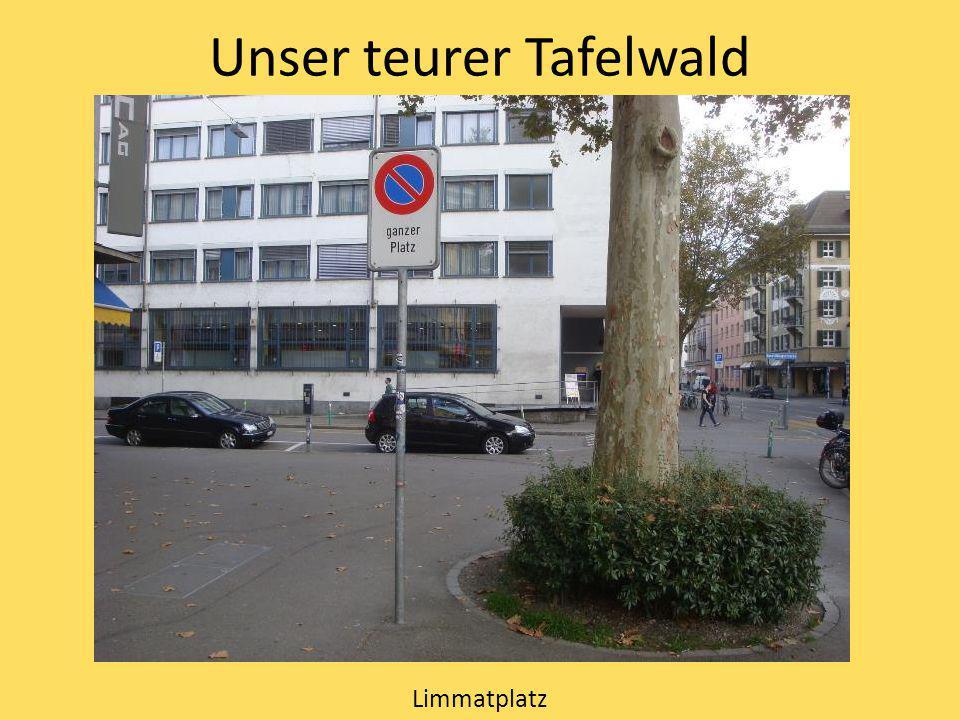 Unser teurer Tafelwald