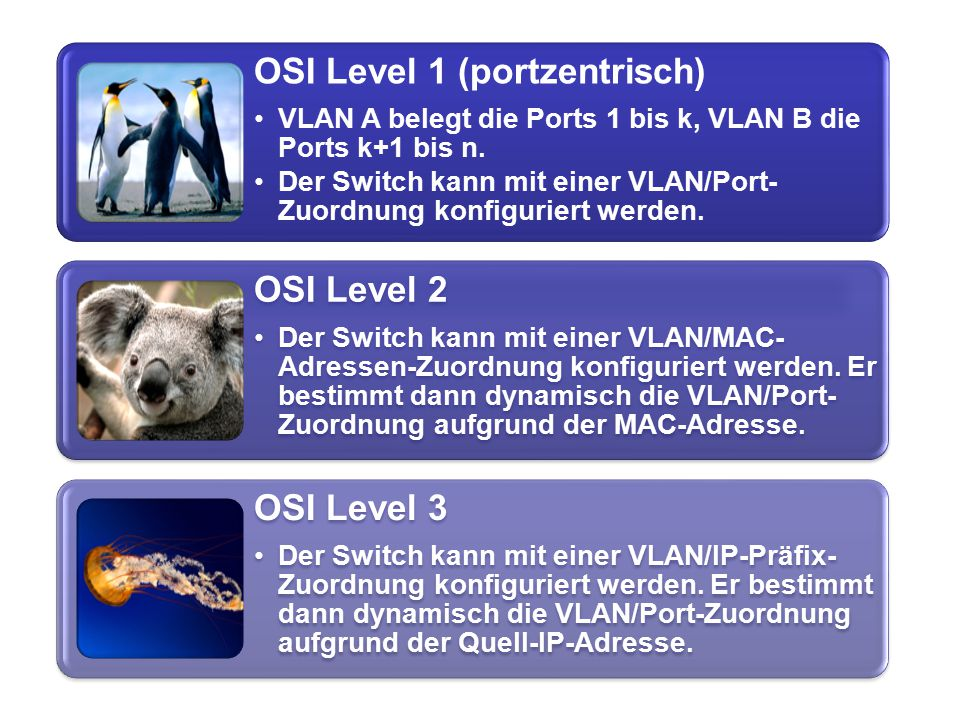 OSI Level 1 (portzentrisch)