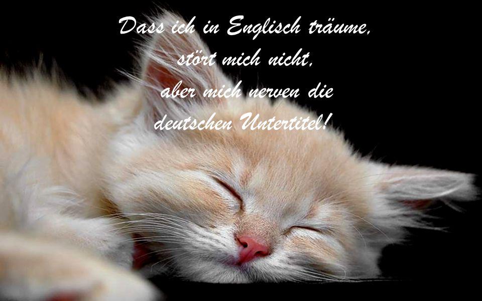 Dass ich in Englisch träume,