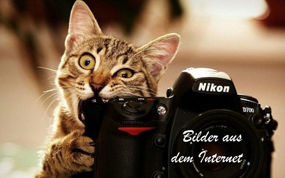 Bilder aus dem Internet 37