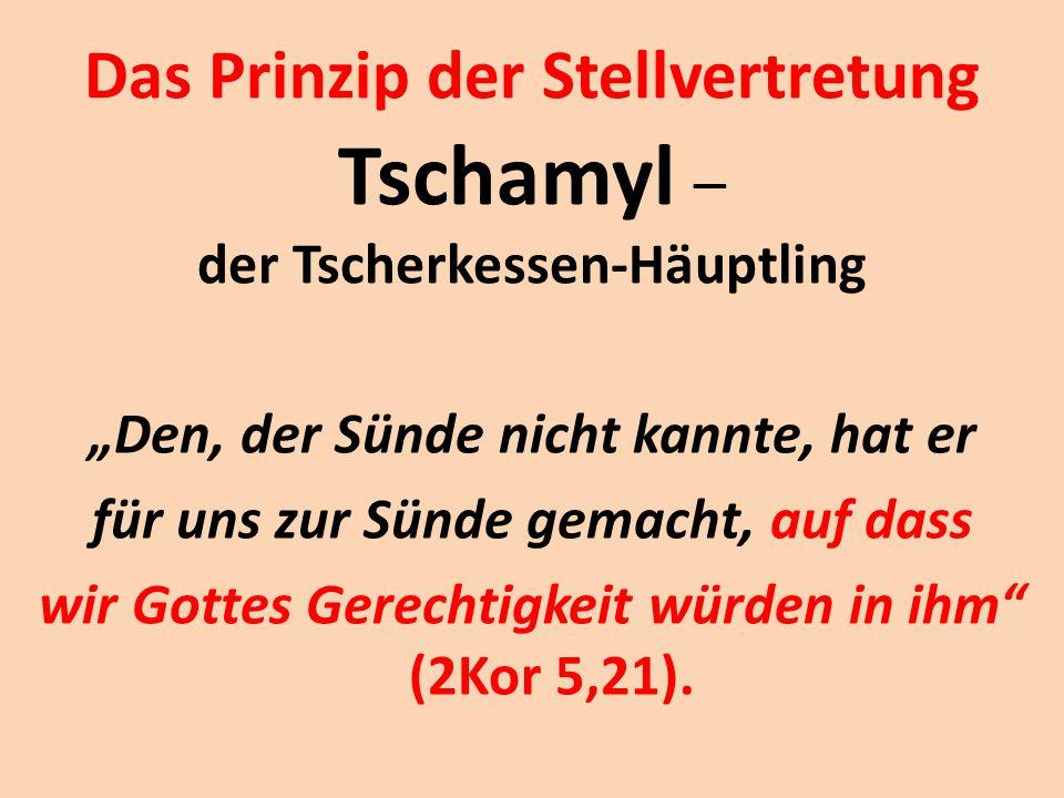 Das Prinzip der Stellvertretung Tschamyl – der Tscherkessen-Häuptling