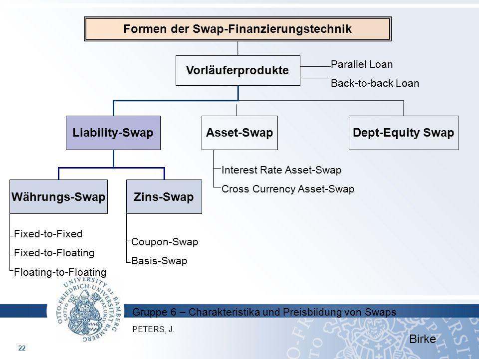 Formen der Swap-Finanzierungstechnik