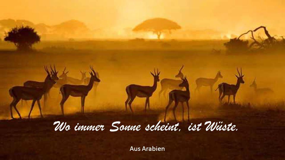 Wo immer Sonne scheint, ist Wüste. Aus Arabien