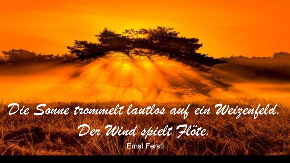 Die Sonne trommelt lautlos auf ein Weizenfeld. Der Wind spielt Flöte.