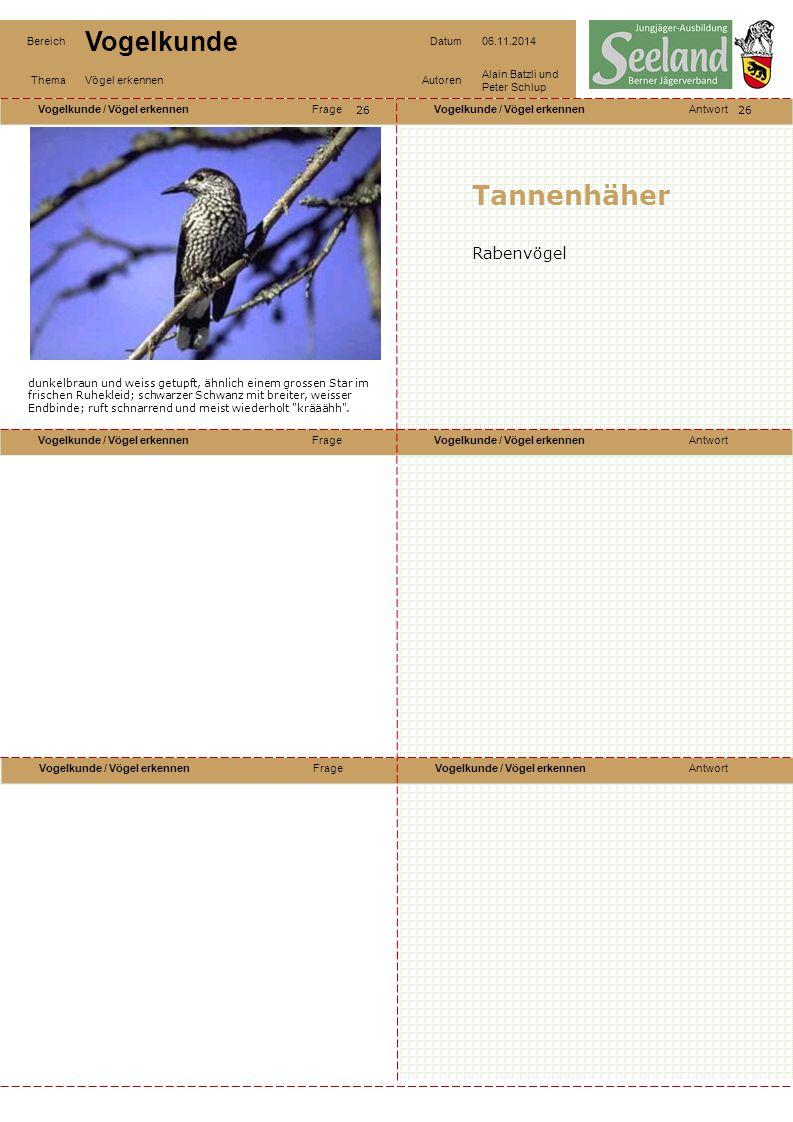Tannenhäher Rabenvögel 26 26