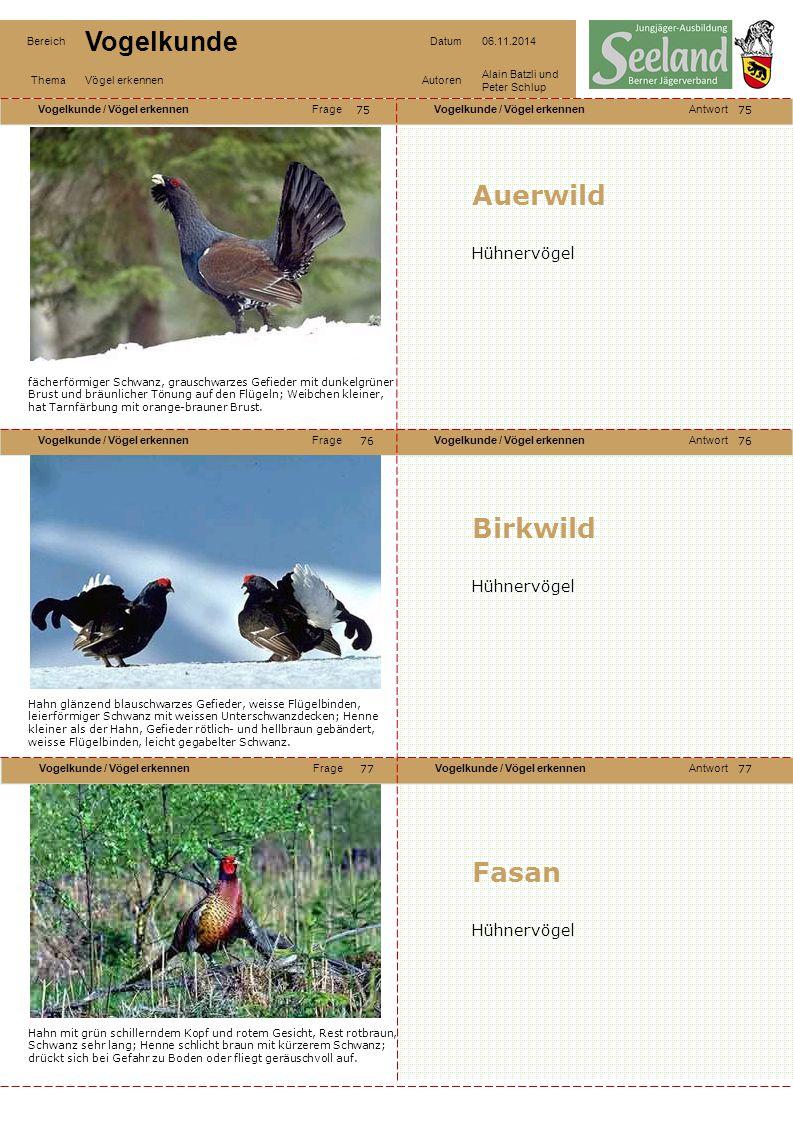 Auerwild Birkwild Fasan Hühnervögel Hühnervögel Hühnervögel 75 75