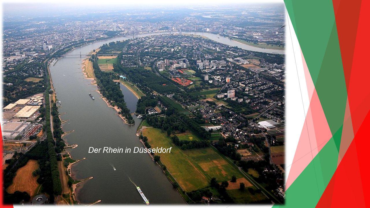 Der Rhein in Düsseldorf.