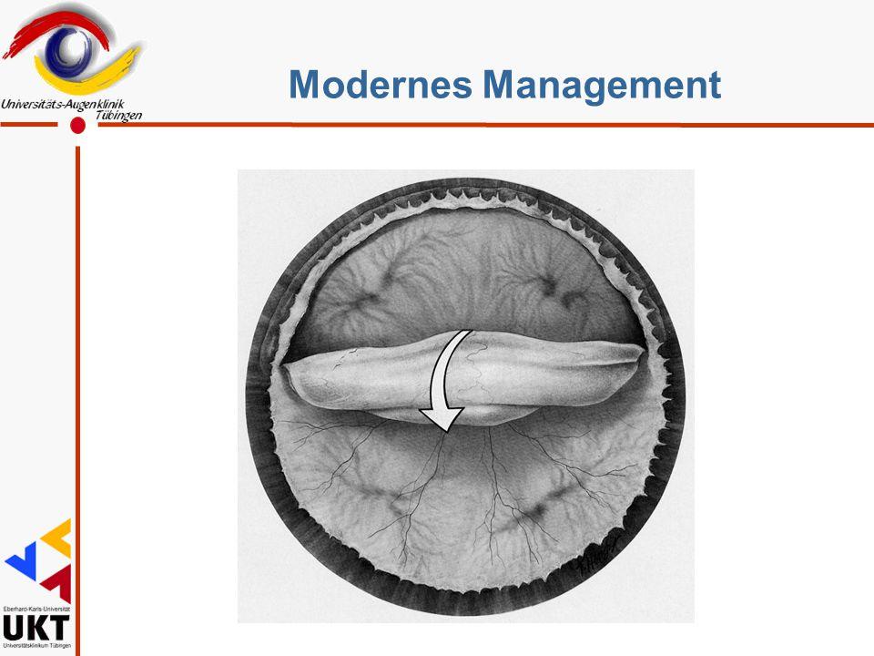 Modernes Management Sz
