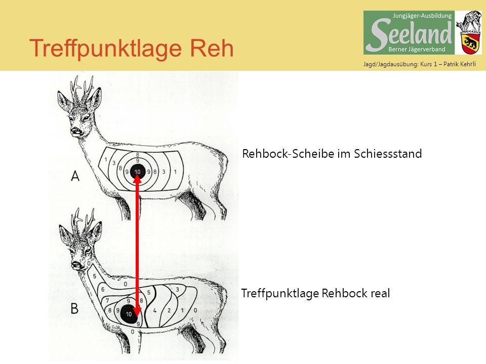 Treffpunktlage Reh Rehbock-Scheibe im Schiessstand