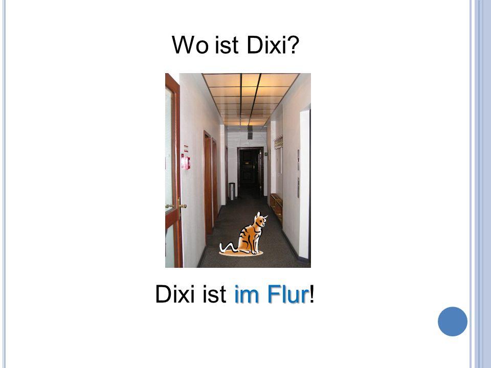 Wo ist Dixi Dixi ist im Flur!