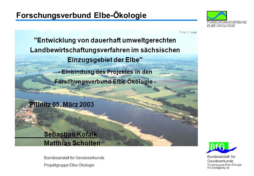 Forschungsverbund Elbe-Ökologie