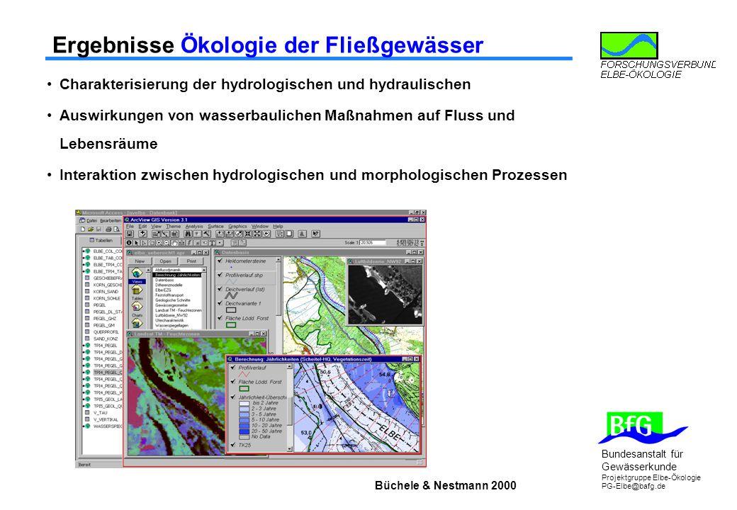 Ergebnisse Ökologie der Fließgewässer