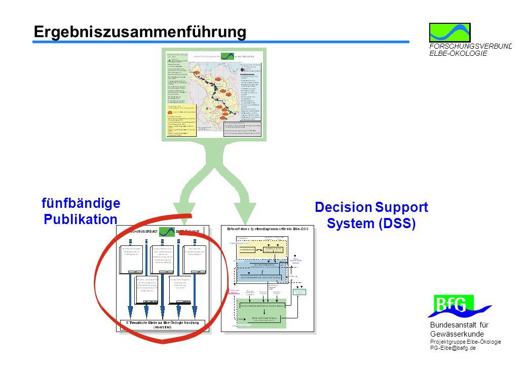 fünfbändige Publikation Decision Support System (DSS)