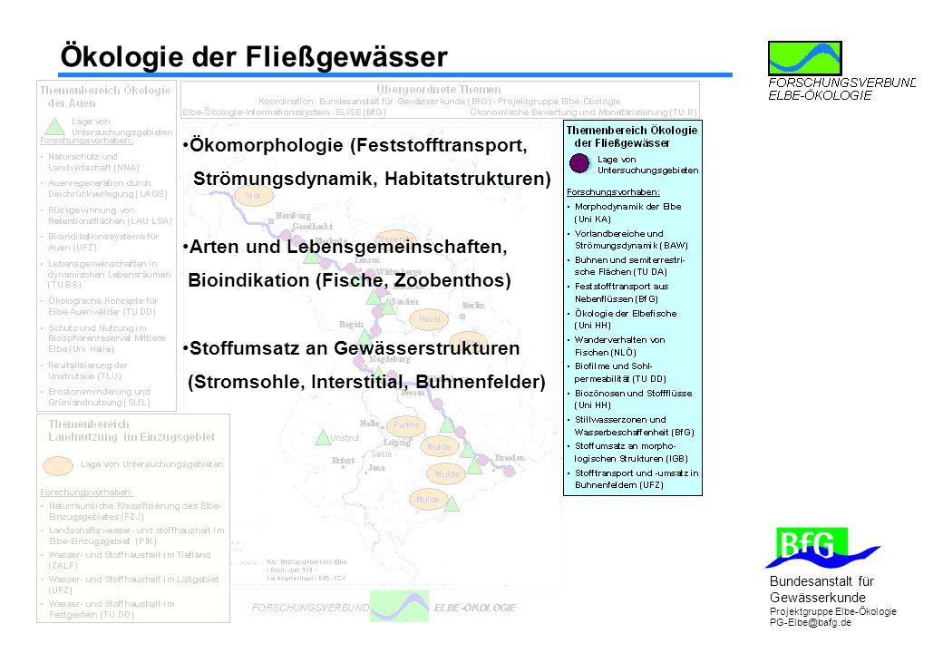 Ökologie der Fließgewässer
