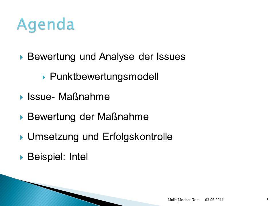 Bewertung und Analyse der Issues Punktbewertungsmodell Issue- Maßnahme