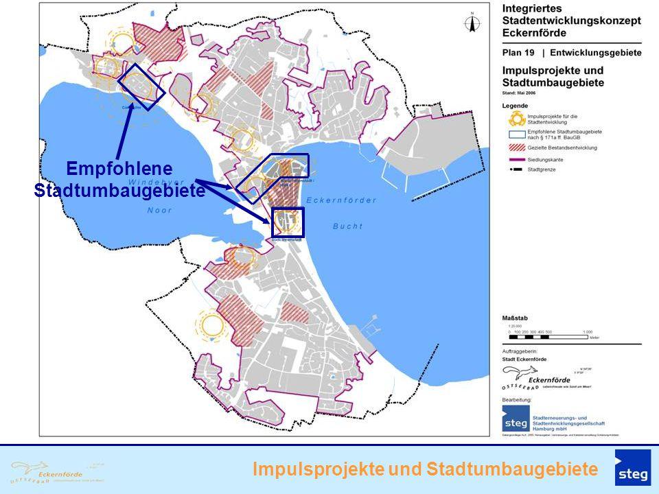 Empfohlene Stadtumbaugebiete Impulsprojekte und Stadtumbaugebiete