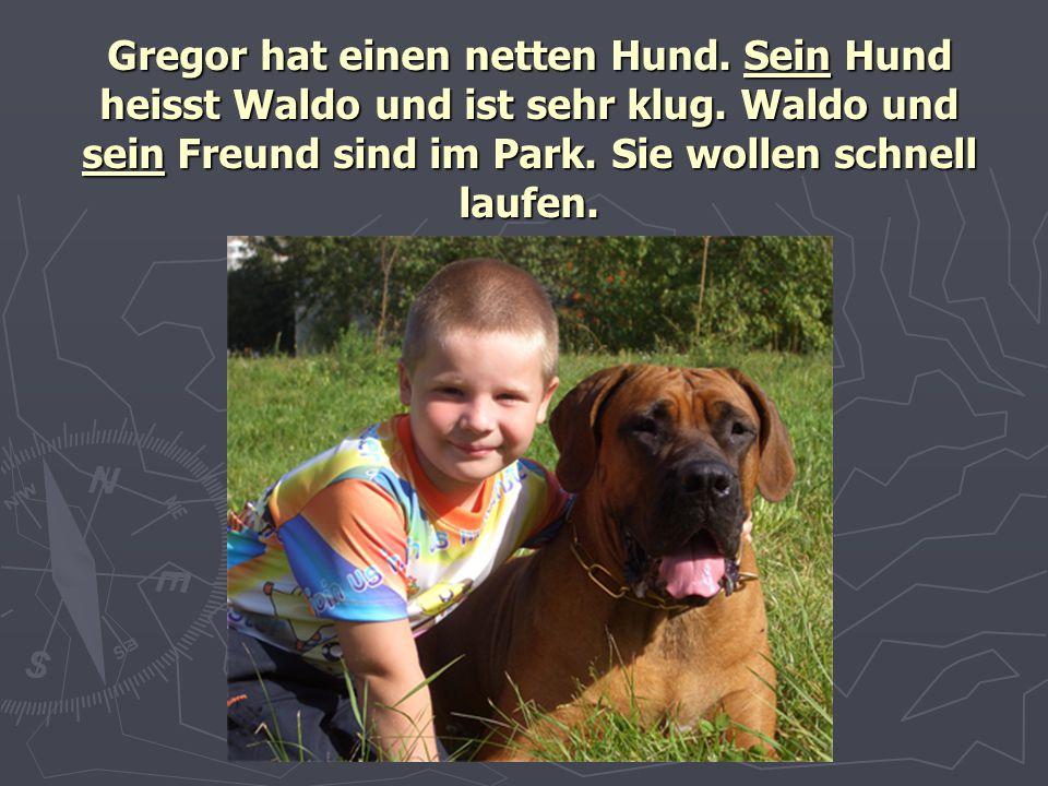 Gregor hat einen netten Hund. Sein Hund heisst Waldo und ist sehr klug