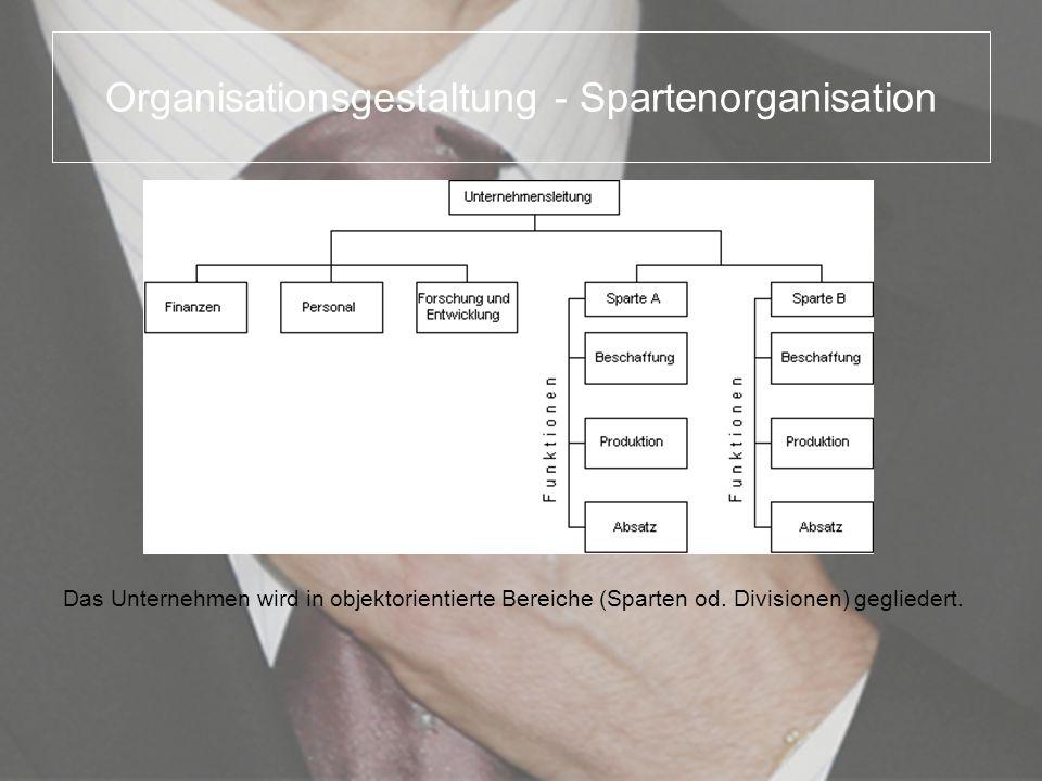 Organisationsgestaltung - Spartenorganisation