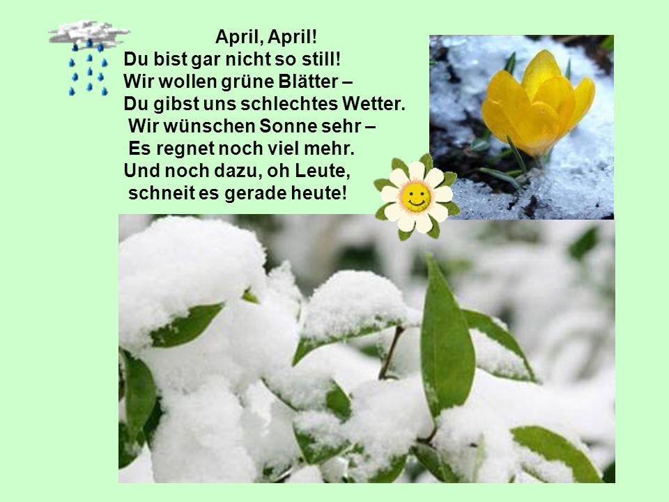 April, April! Du bist gar nicht so still! Wir wollen grüne Blätter – Du gibst uns schlechtes Wetter.