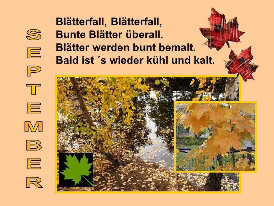 Blätterfall, Blätterfall, Bunte Blätter überall