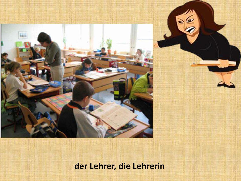 der Lehrer, die Lehrerin