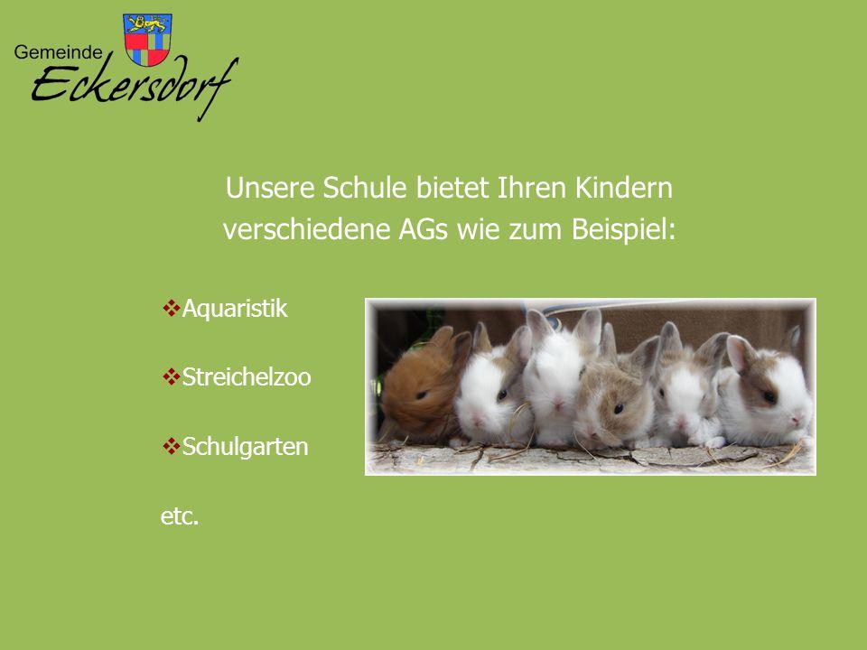 Unsere Schule bietet Ihren Kindern verschiedene AGs wie zum Beispiel: