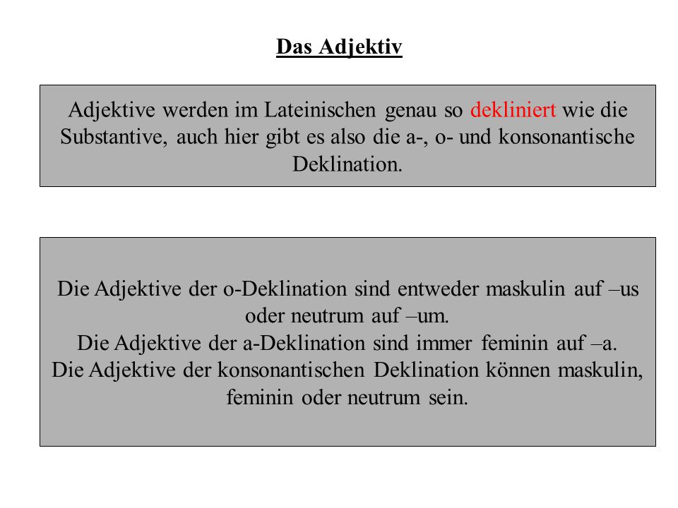 Adjektive werden im Lateinischen genau so dekliniert wie die