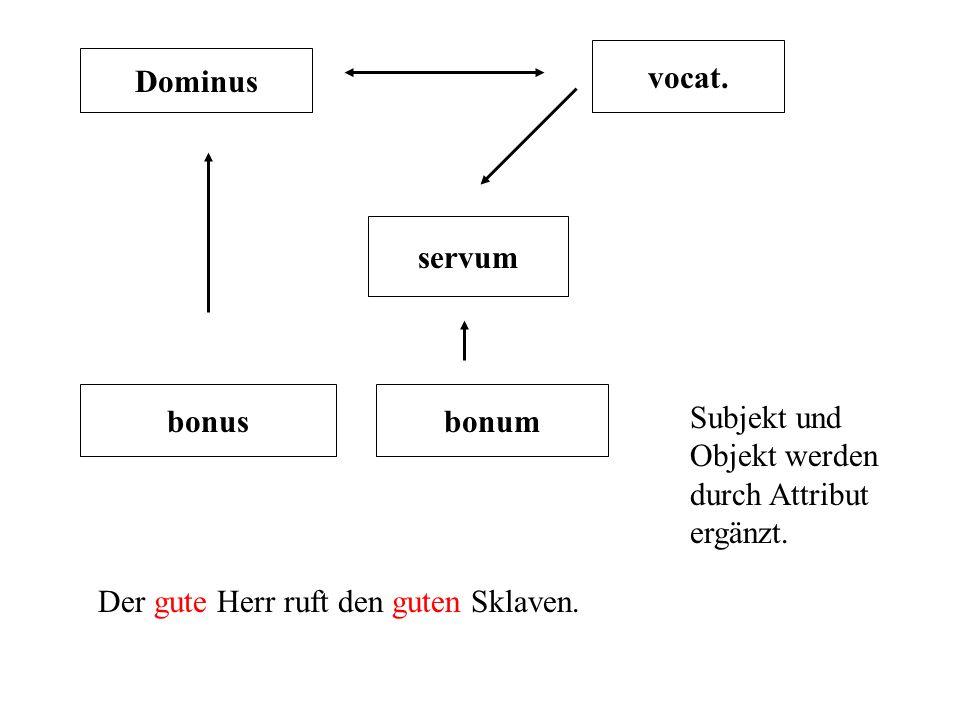 vocat. Dominus. servum. bonus. bonum. Subjekt und Objekt werden durch Attribut ergänzt.