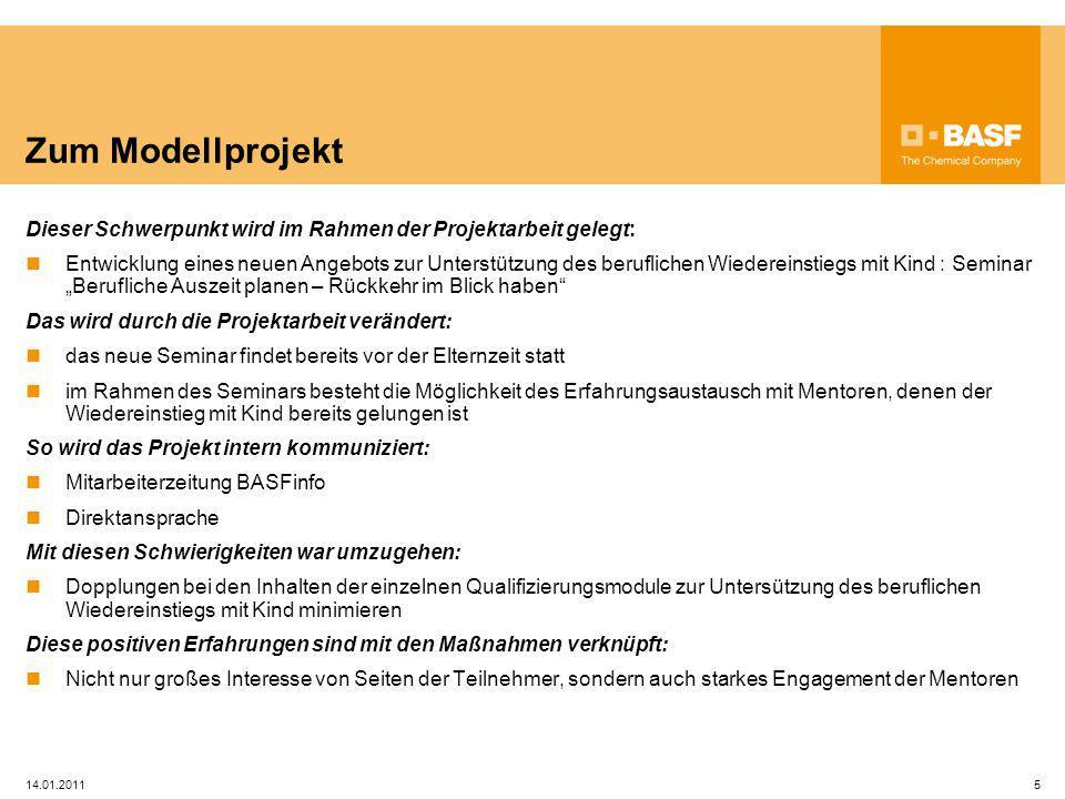 Zum Modellprojekt Dieser Schwerpunkt wird im Rahmen der Projektarbeit gelegt: