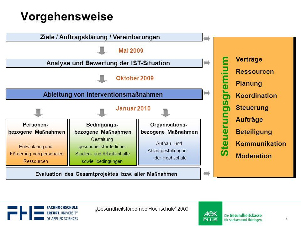 Vorgehensweise Steuerungsgremium Verträge Ressourcen Planung