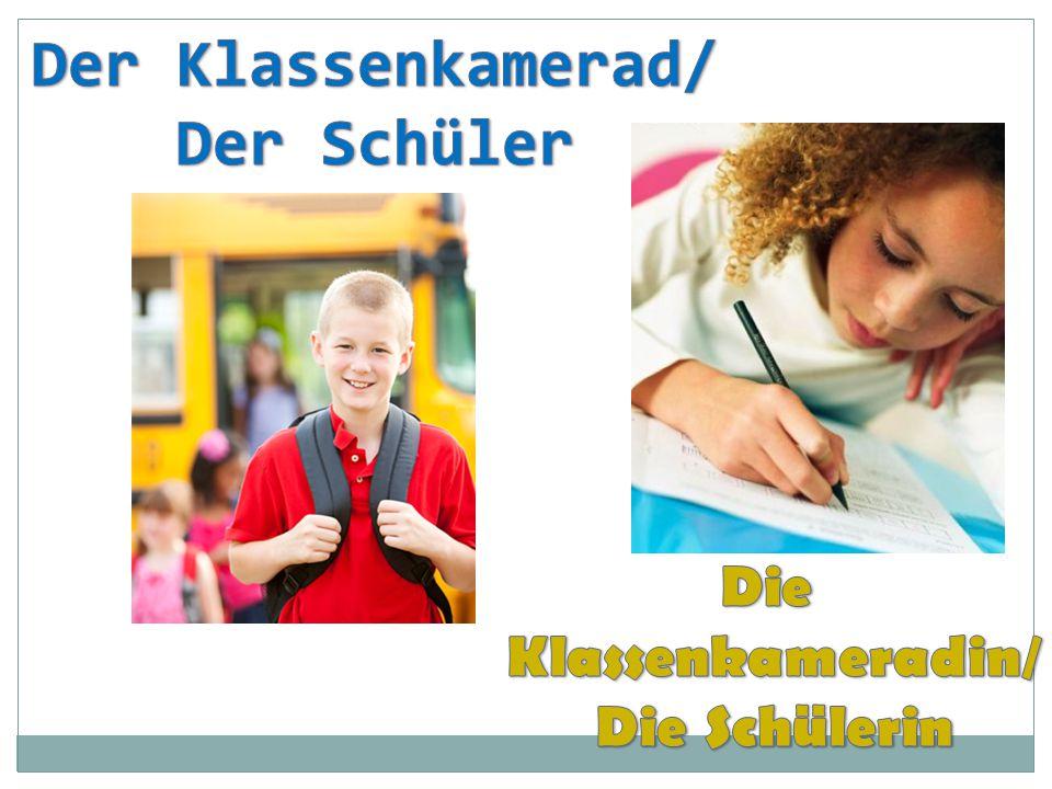 Der Klassenkamerad/ Der Schüler