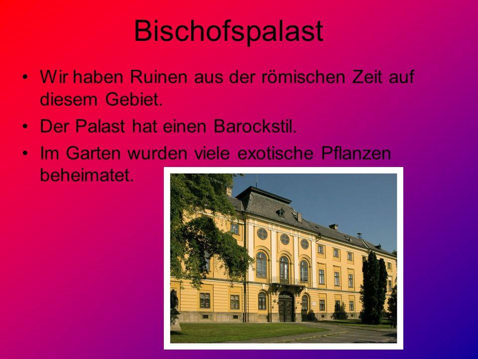 Bischofspalast Wir haben Ruinen aus der römischen Zeit auf diesem Gebiet. Der Palast hat einen Barockstil.